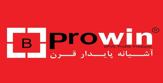 prowin logo