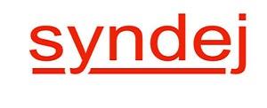 syndej logo